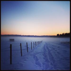 Min härlig väg mellan skola och boende på Ekerö
